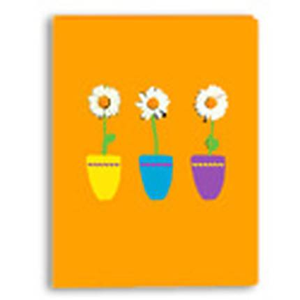 Pioneer Designer Photo Album (36 4x6 photos) - Daisies