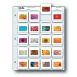 Print File 2X2-20B (25) Slide Pages