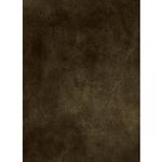 Savage Background Muslin 10x20 Sparta Hand Painted