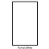 Savage 9x20 Background Infinity Canvas White w/ Free Economy Stand