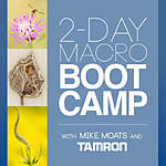 Macro Boot Camp with Mike Moats and Tamron