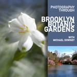 Brooklyn Botanic Garden with Michael Downey
